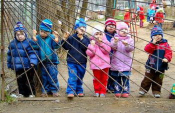 Детских садов в Березниках станет больше